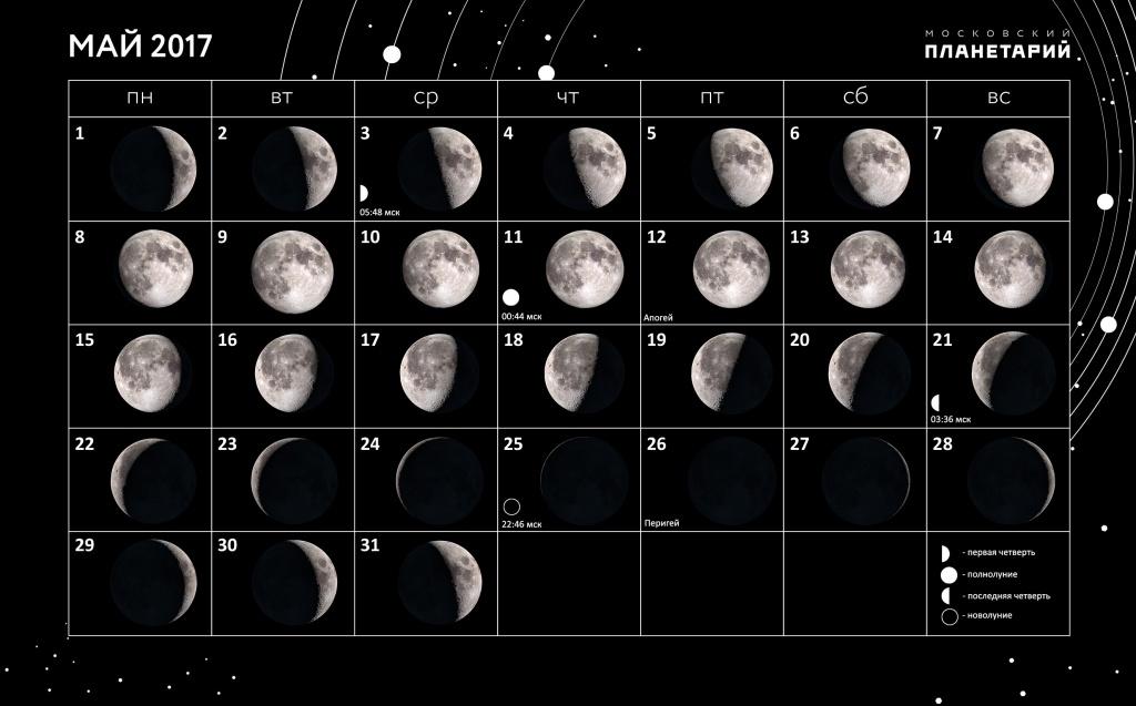 Звездопад можно будет увидеть вмосковском регионе вночь на23апреля
